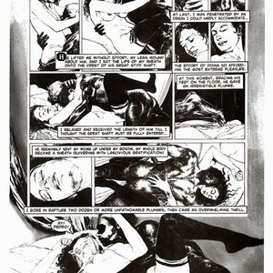 Amerotica Comics A Night In A Moorish Harem 2 gallery image-011