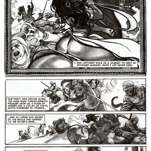 Amerotica Comics A Night In A Moorish Harem 2 gallery image-013