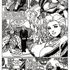 Amerotica Comics A Night In A Moorish Harem 2 gallery image-026