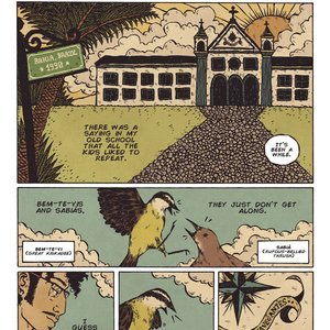 Filthy Figments Comics Bem Te Vi gallery image-002