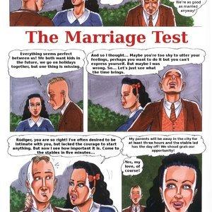 The Marriage Test (Kurt Marasotti Comics) thumbnail